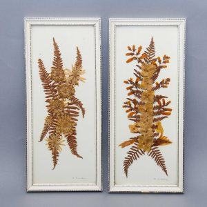 Framed pair of pressed dried leaves flowers pictures vintage pressed botanical flowers white frames