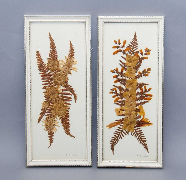 , Framed pair of pressed dried leaves flowers pictures vintage pressed botanical flowers white frames
