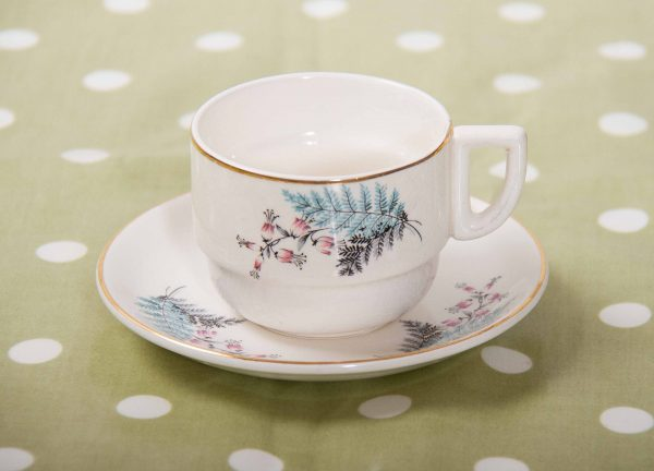 , Victoria and Trentham Potteries England cup and saucer blue fern leaf pink flowers Sirram pattern