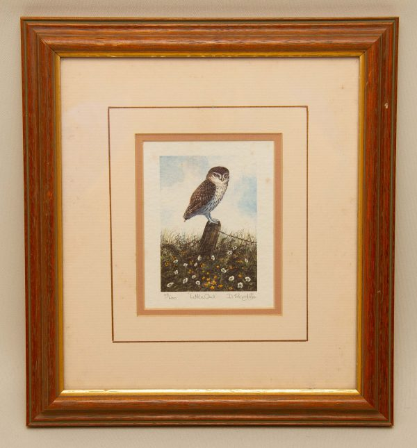"Little Owl signed print, ""Little Owl"" By D Hinchliffe Limited Edition Vintage Framed Signed Print"
