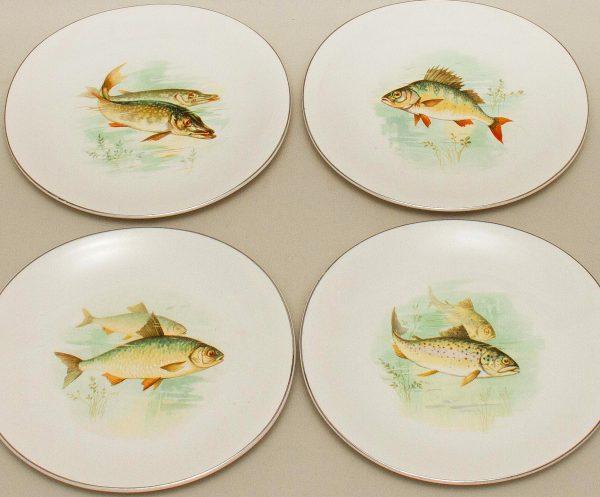 Wedgwood Freshwater Fish plate, Wedgwood Freshwater Fish Vintage Plates Picture Design set of 4